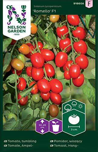 Tomatensamen Romello F1 - Nelson Garden Samen für Gemüsegarten - Cocktailtomaten Saatgut (7 Stück) (Einzelpackung)