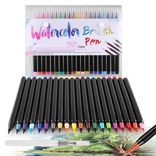 DazSpirit 20 Pinselstifte Set Watercolor Brush Pens + 1 Aquash Wassertankpinse für Kalligraphie, Skizzieren und Färben. Wasserbasiert, Vielseitig