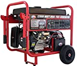 All Power America APGG12000GL 12000 Watt Dual Fuel Portable Generator with Electric...