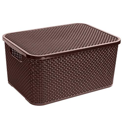 BranQ Rattan Aufbewahrungsbox mit Deckel Box Kiste Aufbewahrungsbehälter (19L, Braun)
