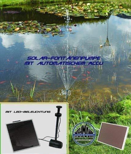 Wehmann Solar-Springbrunnenpumpe mit Accu und Beleuchtung ! mit Memoryfunktion !