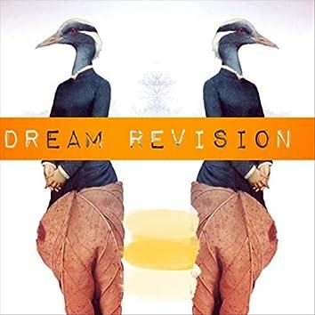 Dream Revision