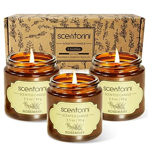 SCENTORINI 3 x 99 g Sojawachs Duftkerzen im Amber Glas, Aromatherapy Kerzen zur Entspannung (Eisenkraut, Rosmarin, Salbei), Geschenkset für Vatertag