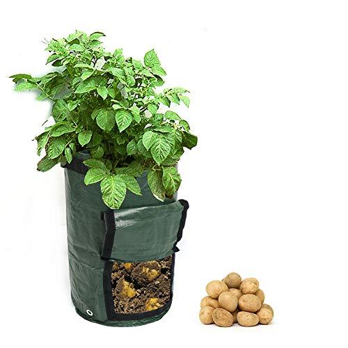 JLCP Kartoffel wachsen Tasche, 7-Gallonen-Gemüse-Pflanzgefäß-Behälter Faltbarer im Freiengarten Wasserdichtes dauerhaftes Mit Griff Gartenabfallsäcke 3 PCS