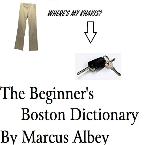 The Beginner's Boston Dictionary audiobook cover art