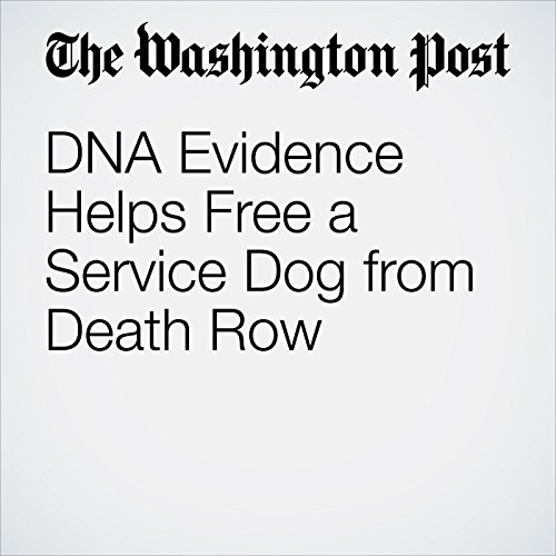 DNA Evidence Helps Free a Service Dog from Death Row audiobook cover art
