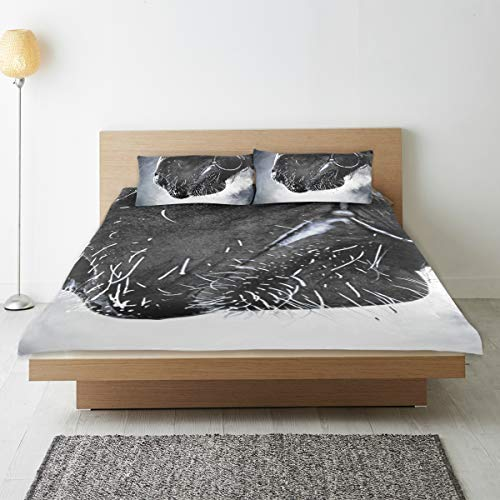 DEZIRO - Juego de ropa de cama para niños, diseño de boca de caballo, color transparente
