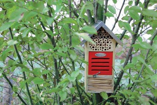 Design-Insektenhaus - 2