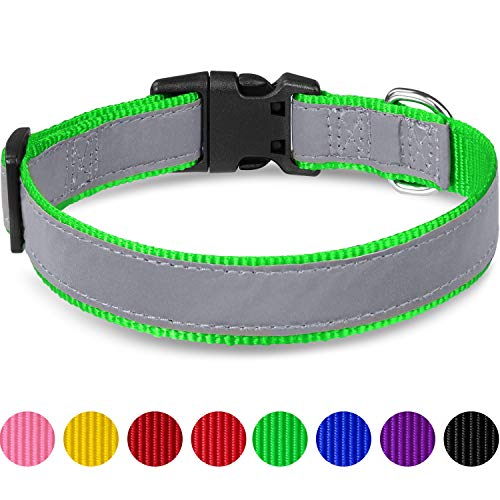 Taglory Reflektierendes Hundehalsband, Verstellbare Weiches Nylon Hunde Halsband für Kleine Hunde, Grün
