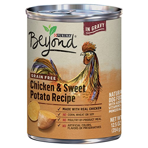Purina Beyond Grain Free Chicken & Sweet Potato Recipe in Gravy Adult Wet Dog Food - (12) 12.5 oz. Cans (Packaging May Vary)