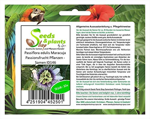 Stk - 10x Passiflora edulis Maracuja Passionsfrucht Pflanzen - Samen ID146 - Seeds Plants Shop Samenbank Pfullingen Patrik Ipsa