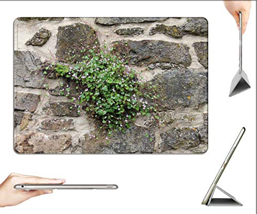 Case for iPad 10.2-inch 2019 (7th Generation) - Plant Wall Blossom Bloom Dulcimer Herb Blue