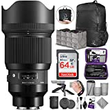 Sigma 85mm f/1.4 DG HSM Art Lens for Sony E Mount Cameras with Altura Photo Advanced Accessory and Travel Bundle