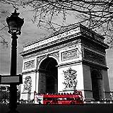TTTTYYY Puzzles Puzzle 1000 Piezas (Arco de Triunfo en Francia) Puzzle Rompecabezas Juguete Educativo para Aliviar el Estrés para Adultos Niños