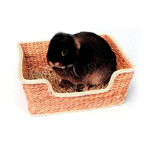 Rosewood Chill-n-Snooze Bett Intelligenzspielzeug für kleine Haustiere