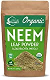 Organic Neem Leaf Powder for Skin, Hair and Blood 8oz (226g)   Azadirachta Indica   USDA Certified by Proud Planet
