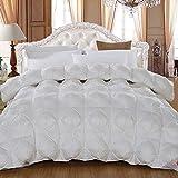 NaNa Bett Auskleidungen Duvet 95 White Goose Quilt Kern Winter Frühling und Herbst-Baumwolle New Plissee Twist Quilt,200 * 230cm