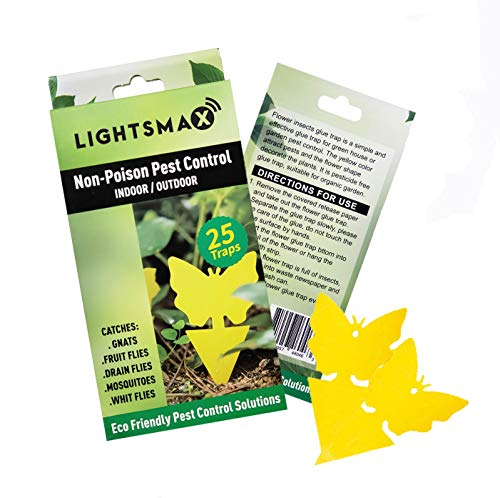 LIGHTSMAX Sticky Trap,Fruit Fly and Gnat Trap Yellow Sticky Bug Traps for Indoor/Outdoor Use - Insect Catcher for White Flies,Mosquitos,Fungus Gnats,Flying Insects - Disposable Glue Trappers (25 pcs)