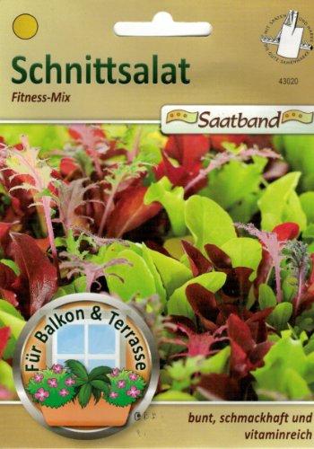 Schnittsalat Fitness Mix Saatband für Balkon & Terrasse bunt schmackhaft vitaminreich 43020 Salat