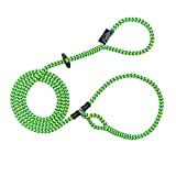 Harness Lead Escape Resistant, Reduce Pull, Dog Harness, Medium/Large, 40-170 lb, Peacock ...