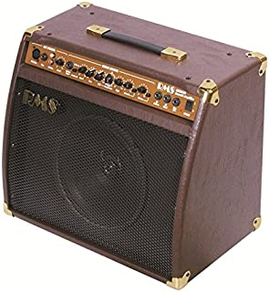 RMS acoustic-guitar-amplifier-equipment (RMSAC40)