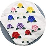 Hierro en parches Ropa Parches Apliques Sticker bordados para Ropa Mochila Gorras Jeans Zapatos,12pcs rose suit small and medium