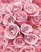 油絵 数字キットによる デジタル インテリア キャンバスの油絵子供 ホーム オフィス装飾 40x50センチ-ピンクのバラ_額装