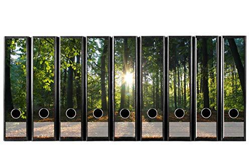 codiarts. 9 Stück breite Akten Etiketten selbstklebend DIN A4 breit (Ordnerrücken Aufkleber Klebeetiketten) Sonne Waldlichtung Natur Sonnenuntergangfür Büro Arbeitsplatz zu Hause