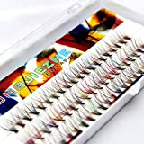 60Pcs Grafting 10Roots Colorful Volume Eye Lashes Extensions Thickness 0.07mm Individual Beauty Muti-color False Eyelashes Cluster Make Up Tools 8/10/12/14mm to Choose (14mm)