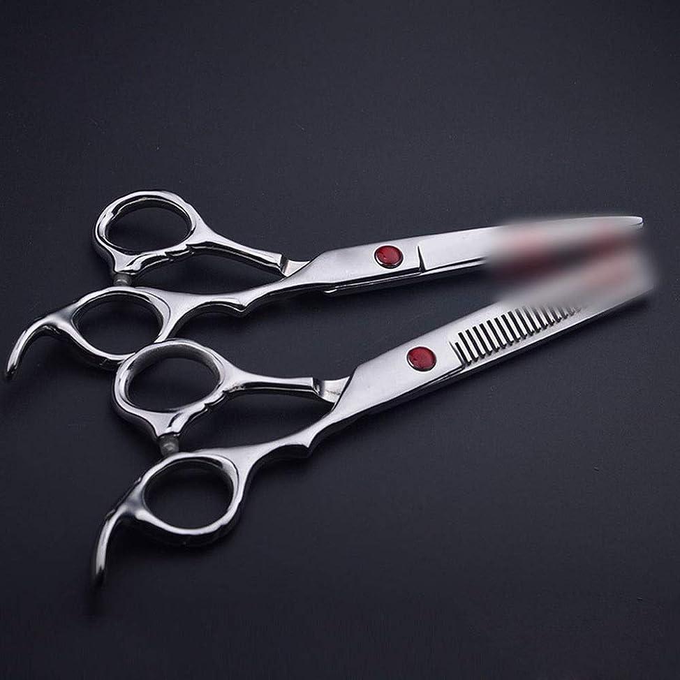 休憩する褒賞の面では6.0インチストレートハンドルプロフェッショナル理髪用はさみ、フラット+歯はさみ散髪 ヘアケア (色 : Silver)