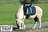 [page_title]-Tysons Breeches Ponysattel Sattel 10 o 12 Zoll BLAU -Schwarz incl. Zubehör a.f. e. Holzpferd geeignet Sattel Set (12 Zoll)