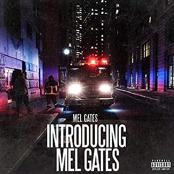 Introduing Mel Gates