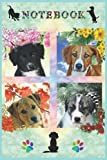 SAT Charity Notebook: A fun Notebook for daily use where all profits go to our dog Charity SAT