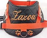 Hundegeschirr S M L XL XXL Brustgeschirr mit Wunsch Namen bestickt Kunstleder gesteppt schwarz orange LED für kleine, mittelgroße und große Hunde Geschirr