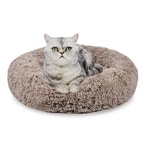 AIPERRO Pet Bed for Cats