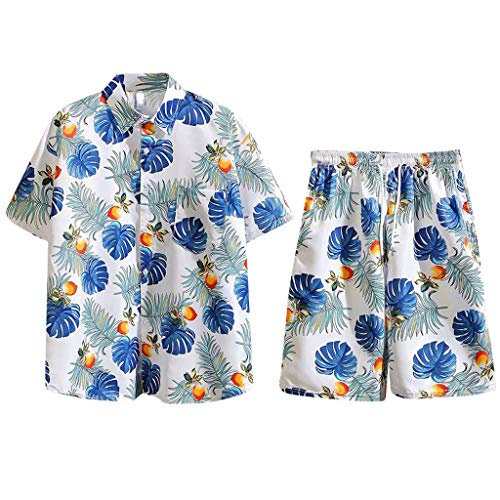 Men's Hawaii Summer Fashion Print Short Sleeve Shorts Set Shirt Set Vocation