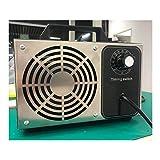 Purificador de aire comercial Generador de ozono Ionizadores de aire domésticos 28000 mg / h Salida de O3 Esterilización Desodorización Eliminación de formaldehído para habitaciones Hoteles y granja