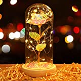 Siebwin Rainbow Rose, Forever Flower, Galaxy Enchanted Rose in Glass Dome with LED Lights, Mother's Day, Birthday, Anniversary, Wedding, Valentines Day Gifts for Her, Valentines Day Gifts for Mom