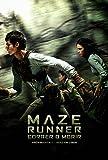 Correr o morir. Maze Runner I
