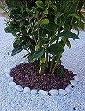 Todostones Piedra Volcánica roja (10/25mm) para decoración jardín (20L)