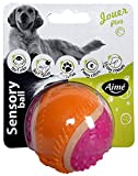 AIME Jouet Balle pour Chien, Jouet 5 Sens, Balle 6 cm - Goût Boeuf - pour Chien, Jouet Interactif Chien
