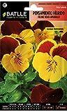 Semillas de Flores - Pensamiento Híbrido Feline Rojo-Amarillo - Batlle