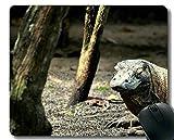 Cojín de ratón del Juego, cojín de ratón de Goma Antiguo de Komodo