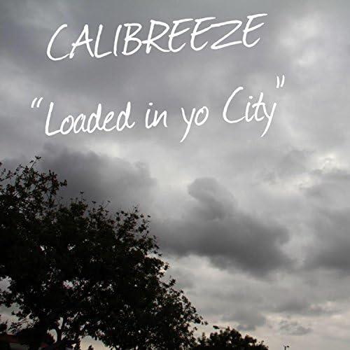 Calibreeze