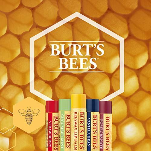 Burt's Bees 100 Prozent Natürlicher getönter Lippenbalsam, Honig mit Bienenwachs, 1 Stift - 4