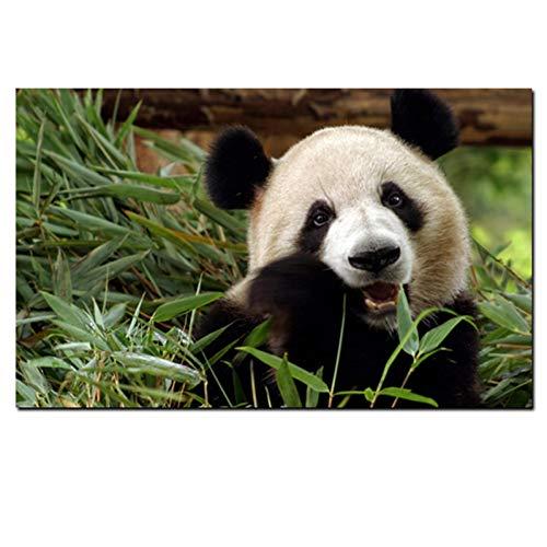 GUDOJK muurschildering Hd Print groene bamboe oo plant poster panda beer dier canvas schilderij moderne muurkunst afbeelding voor woonkamer decoratie 70x100cm(28x40inch)