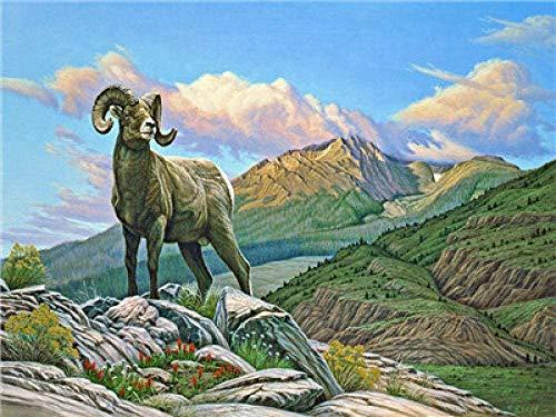 WMNBV Pintar por Numeros para Cabra ed - (40x50cm) con marcoLos Mejores Regalos para Amantes, niños y Madres.