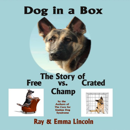 Dog in a Box audiobook cover art