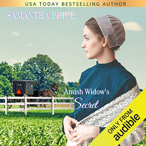 Amish Widow's Secret cover art