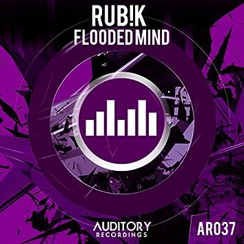 Flooded Mind